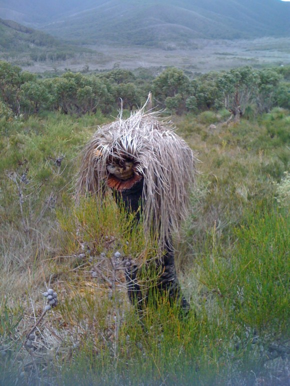 Grass tree person